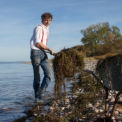 Kristian Dittmann sammelt Seegras - 26.10.2015 - Foto Marcus Dewanger